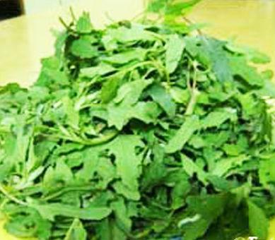 Bathua Leaves
