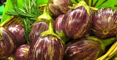 Eggplants - Eggplant Salad