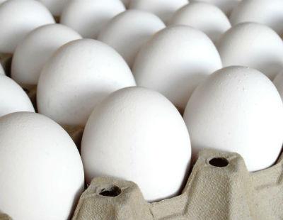 Eggs - Egg Caldinho