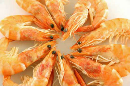 King%20Prawns - Chemmeen Ithal Orotti