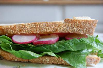 Radish Sandwich