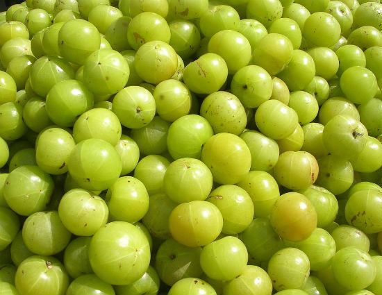 amla indian gooseberry - Delicious Amla