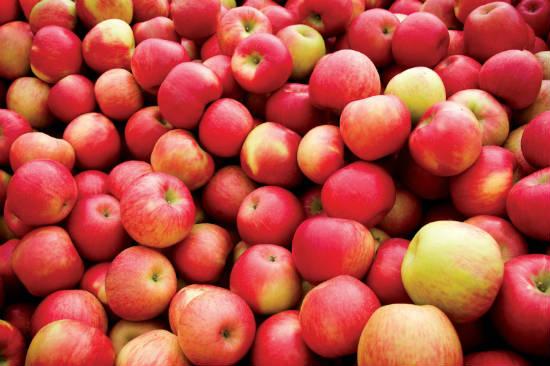 apples benefits - 10 Health Benefits of Apple