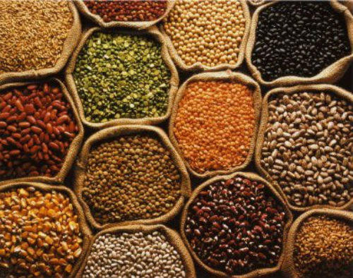 food grains - Preserving Food Grains