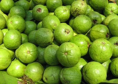 guavas - Guava Chutney