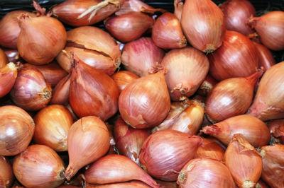 Shallots / Sambar Onions