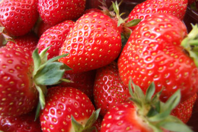 strawberries - Healthy Facts about Strawberries