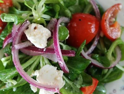 turkish garden salad - Turkish Garden Salad