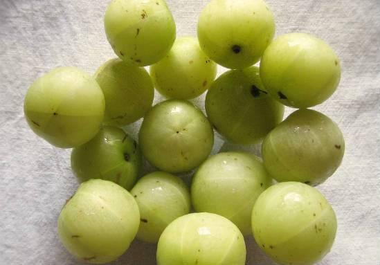 nellikai - Gooseberry Pickle (Nellikai Oorugai)