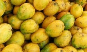 Mango Madness   King of Fruits - Roast Duck Salad