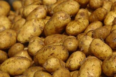 Mashed Potato and Tomato Subji