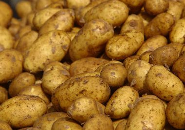 Potatoes4 380x267 - Fifty Fifty