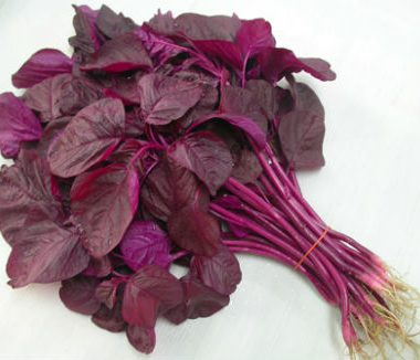 Red Spinach 380x326 - Goan Red Bhaji