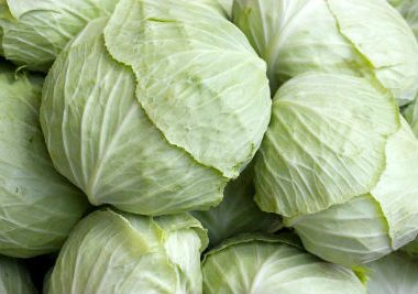 cabbage2 380x267 - Panfried Noodles