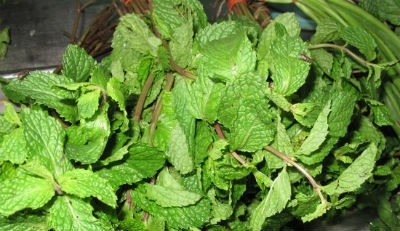 Mint and Coriander Sundal