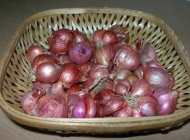 Small Onion Pickle