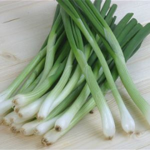 Spring Onion and Pumpkin Soup