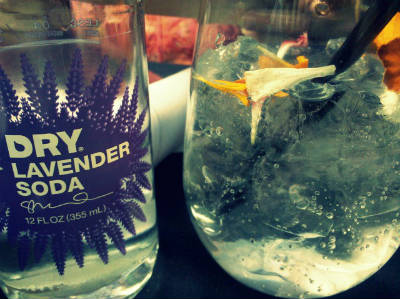 dry lavender soda - Autumnal Temptations