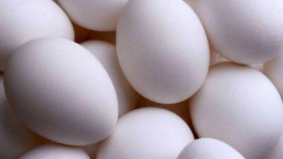 Egg Fillip