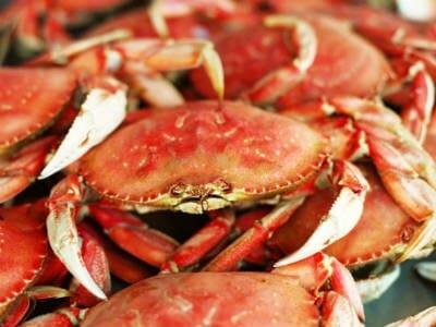 crabs - Crab Biryani