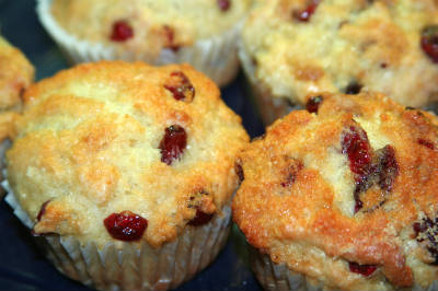 orange cranberry muffins - Orange Cranberry Muffins