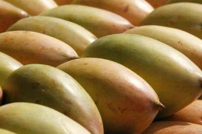 Kili Mooku Mango Biryani