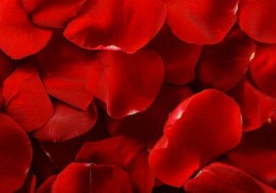 red rose petals - Gulabi Gulkand Syrup
