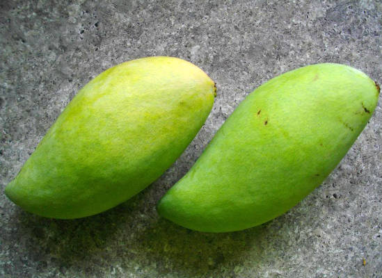green mangoes - Masala Mango Rice