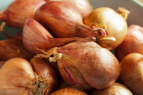 Shallots / Small Onions