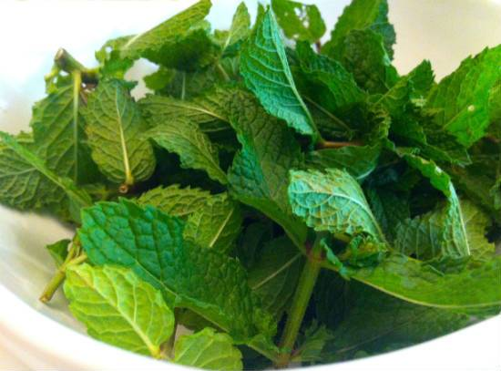 mint leaves - Mint, Lime and Honey Marinade