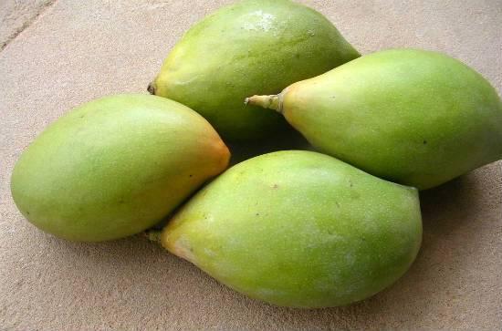 kili mooku mangoes - Mango Thogayal (Mango Thuvaiyal)