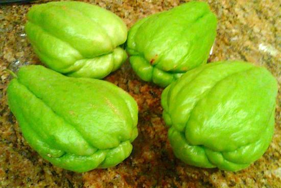 Chow Chow (Chayote Squash)