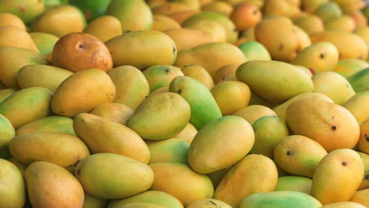 mangoes - 10 Health Benefits of Mangoes