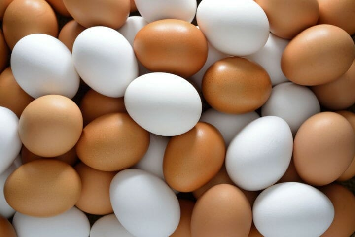 eggs - 9 Food Myths That are False