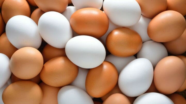 eggs - 19 Foods to Take For Diabetes