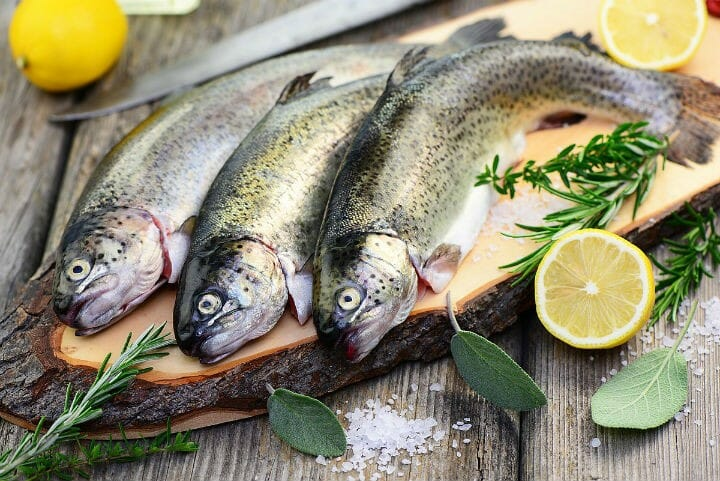fish - 19 Foods to Take For Diabetes