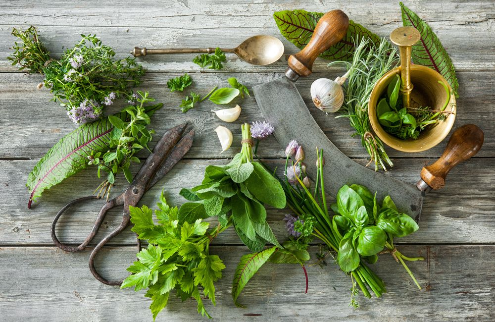 fresh herbs - 4 Essential Fresh Herbs You Should Use
